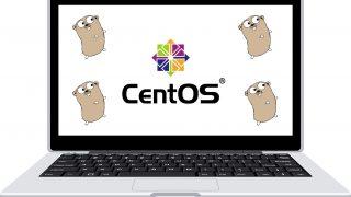 Centos7にGolangをインストールする方法 [Chef, Ansible対応]